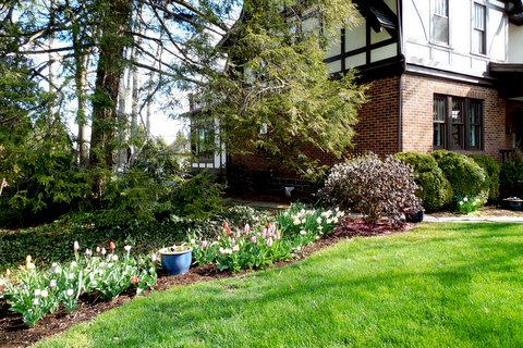 April 2016 Yard of the Month